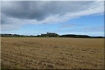 NU1834 : Farmland near Bamburgh by DS Pugh