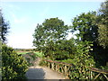 TQ5572 : Footbridge over the River Darent by Chris Whippet