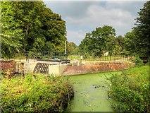 SJ8382 : River Bollin Hydro-Electric Scheme at Quarry Bank Mill by David Dixon