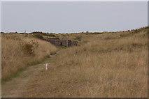 TF7144 : WW2 bunkers, Holme Dunes by Pauline E