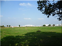 TQ0975 : Looking across a horse pasture to Heathrow by Marathon