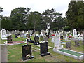 SU4510 : St Mary's Extra Cemetery Southampton (1) by Basher Eyre