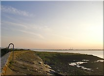 TQ7178 : The Thames foreshore and seawall above Lower Hope Point by Stefan Czapski