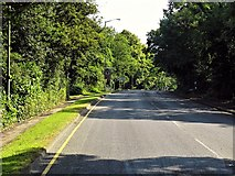 SU9567 : A30, London Road, Sunningdale by David Dixon