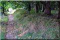 TL0941 : Footpath towards Sandpit Farm by Philip Jeffrey