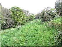 SX1061 : Path near Slip Wood by Peter Holmes