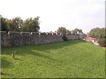 SE6052 : City wall, Jewbury, York by Robin Sones