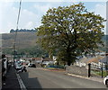 SS9091 : Early autumn colours in Pontycymer by Jaggery