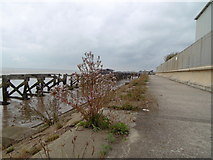 TA1228 : Trans Pennine Trail towards Hull City Centre by Ian S