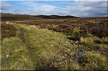 NN6968 : View North from Loch Cruinn by jeff collins