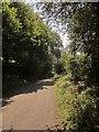 SX2959 : Lane near Trebrownbridge by Derek Harper