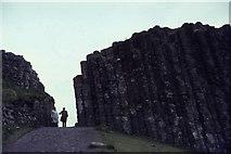 C9444 : Giant's Causeway by Elliott Simpson
