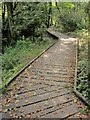 SX3056 : Duckboards, Seaton valley by Derek Harper