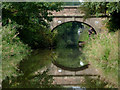 SJ8762 : Galley Bridge at Congleton, Cheshire by Roger  Kidd
