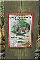 NY5234 : Squirrel notice by Richard Dorrell