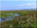 NR2767 : View from Taigh Deas hide, Gruinart RSPB Reserve by Oliver Dixon