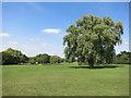 TQ5492 : Central Park, Harold Hill by Des Blenkinsopp