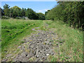 TQ5393 : Strange Surface on the Path by Des Blenkinsopp