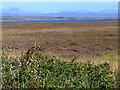 NR2165 : Loch Gorm by Oliver Dixon