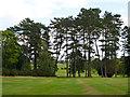 TQ0288 : Pines, Denham Golf Club by Robin Webster