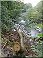 SE0556 : Dales Way trek from Bolton Abbey to Pinder Stile (28) by Basher Eyre
