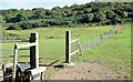 J4772 : Fence and fields, Killynether, Newtownards (September 2014) by Albert Bridge