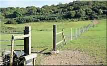 J4772 : Fence and fields, Killynether, Newtownards (September 2014) by Albert Bridge