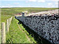 SM8003 : The Wall of a Disused Walled Garden by Tony Atkin