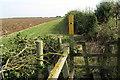 TL0854 : Footbridge over the stream by Philip Jeffrey