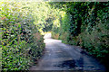 SW7637 : A very narrow and twisting Cornish lane. by Robert Ashby