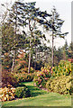 SU9770 : Savill Gardens, Windsor Great Park in early autumn by Ben Brooksbank