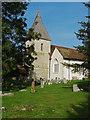 TQ0852 : St Mary's Church, West Horsley by Alan Hunt