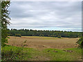 SU7346 : Fields and woods near Long Sutton by Robin Webster