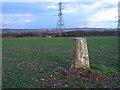 SJ9407 : Trig point at Saredon Hill by Trevor Littlewood