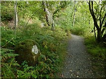 NS4276 : Stone beside the Nature Trail by Lairich Rig