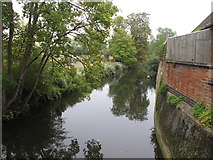 SP5206 : Cherwell mill cut backwater from St Catherine's College bridge by David Hawgood