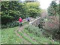 SE9490 : Bridge  Farm  has  two  bridges by Martin Dawes