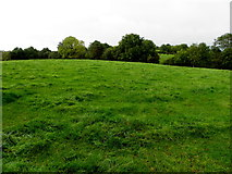 H6457 : Armalughey Townland by Kenneth  Allen