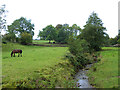 NY6140 : Hazelrigg Beck at Unthank by Oliver Dixon
