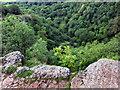 ST5248 : Down into Ebbor Gorge by Des Blenkinsopp