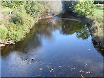 NX9479 : Cluden Water from Newbridge Bridge by Peter Wood