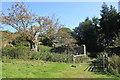 SJ2637 : Chirk Castle Estate by Jeff Buck