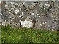 NR4349 : Bench mark on bridge over Ardilistry River, Islay by Becky Williamson