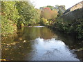 SE2700 : View from the Stepping Stones by Dave Pickersgill