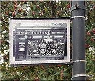 SJ8889 : Edgeley Lamppost: Bostock & Co by Gerald England
