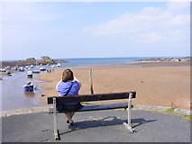 SS2006 : Bude Bench by Gordon Griffiths