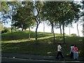 SO9390 : Landscaping by Wellington Road, Dudley by Robin Stott