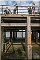 TQ8883 : Southend Pier, Southend-on-Sea, Essex by Christine Matthews