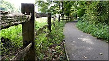 SP1106 : Public Footpath from Arlington Mill to Arlington Row by Roger Gittins