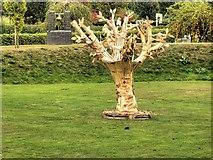SK1814 : National Memorial Arboretum, Staffordshire by David Dixon
